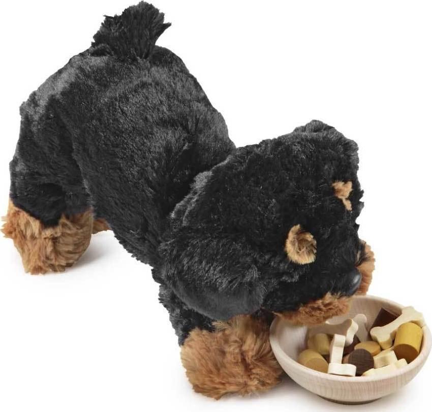 Croquettes pour chien chez les enfants - Comparatif croquettes chien 60 millions ...